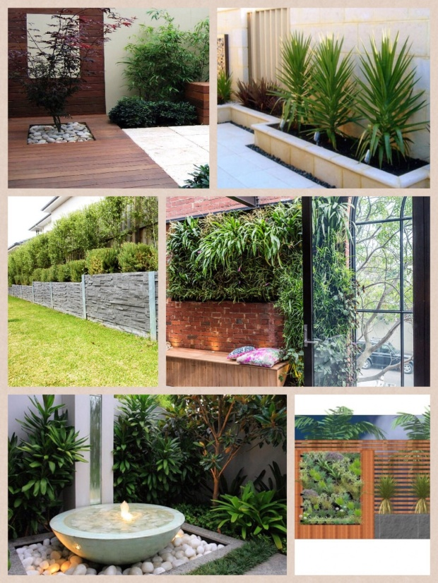 Collage of beautiful images for the side garden